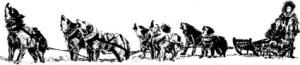 historia alaskan malamute